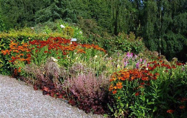 colourful borders