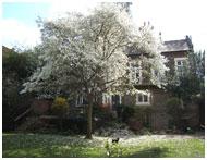 communal garden designer