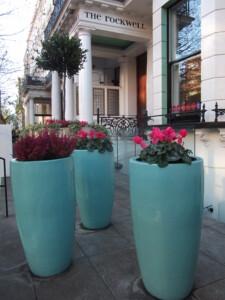 Plunket hotel planting