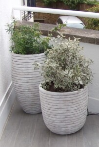 Ribbed curved container white