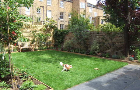 Brook Green London garden designer