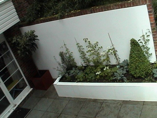 courtyard London garden designer