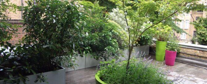 warehouse roof garden designer