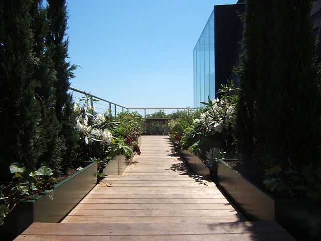 penthouse roof terrace designer