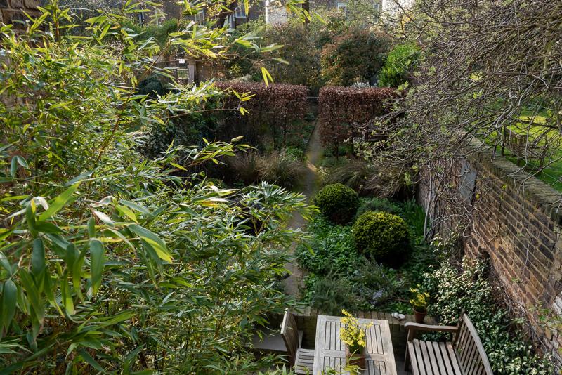 Hammersmith walled garden above bamboo