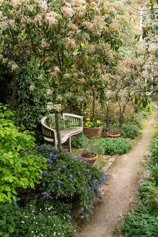 Hammersmith walled garden rear bench port
